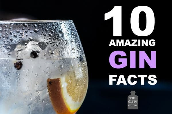 10 Amazing Facts About Gin